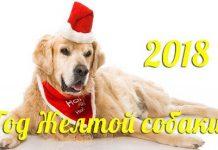 В чем встречать Год Земляной Собаки